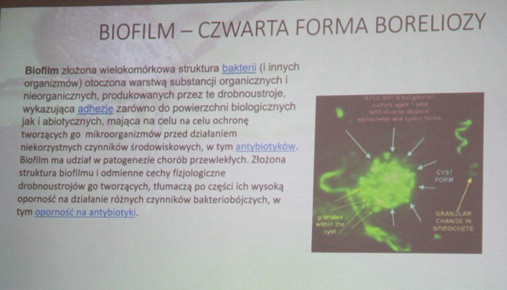 Część wykładu Kongresu o Boreliozie - Apiterapie.pl